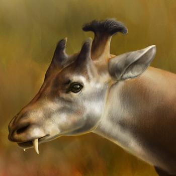 Древние животные с самыми причудливыми рогами на голове