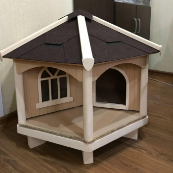 В столице Ингушетии в каждый двор поставят домики для бродячих кошек