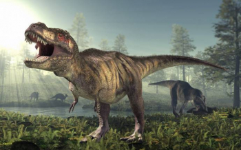 Загадки Тираннозавра Рекса